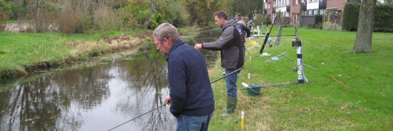 Baarspeuteren Torrenpikken Vissen In Het Kantje Op Kleine